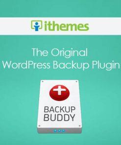 BackupBuddy Pro WordPress Plugin