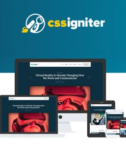 CSS Igniter Vidiho Pro Theme