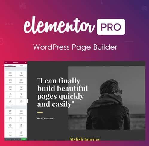 Elementor Pro Page Builder Wordpress Plugin