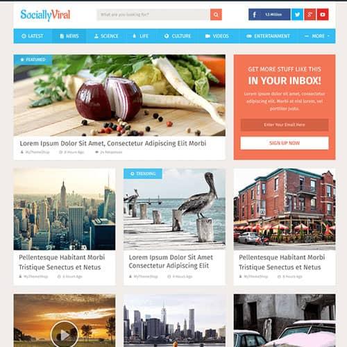 MyThemeShop SociallyViral WordPress Theme